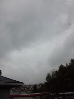 雨なんですけど…