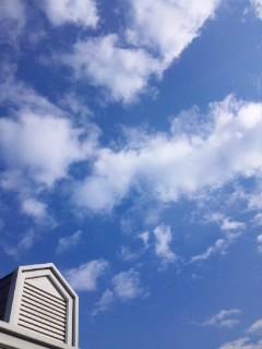 今日は良い天気…