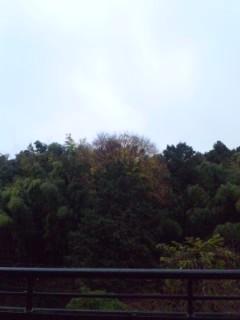 嵐@横浜…