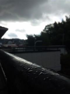 一雨降りました…