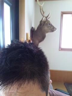 髪切りました…