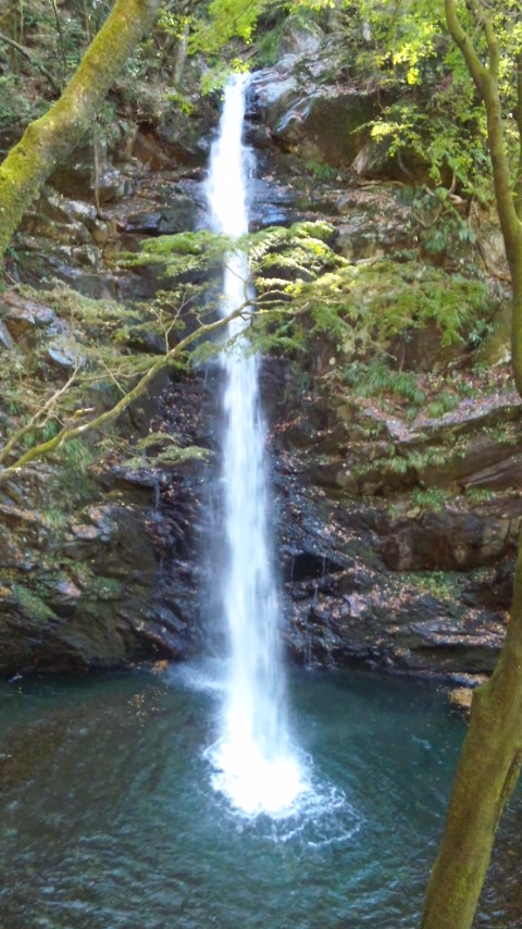 不動の滝…
