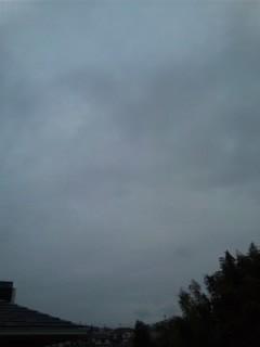 曇りの朝…