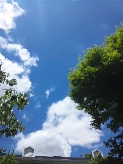まるで初夏の空のような…
