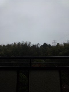 今日も雨…